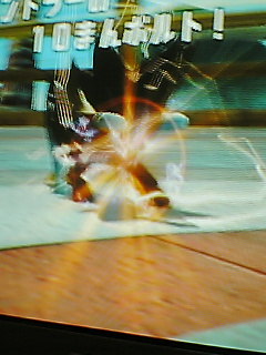 ネット対戦(Wiiポケモン)