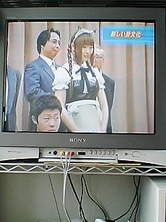 畳萌え〜 TV