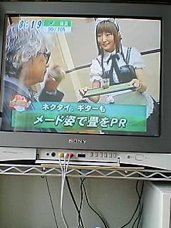 畳萌え〜 よく観るTV