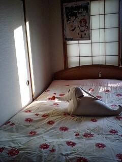 部屋の模様替え
