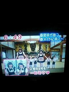 めざましテレビ(全国畳 検索)